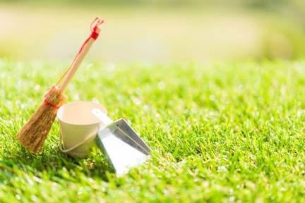 環境美化の取組に清掃活動を実施
