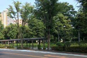 埼玉大学行・バス停