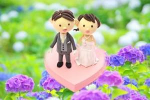 紫陽花が彩る結婚式