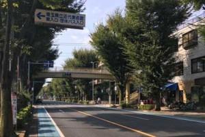 さいたま市北浦和公園歩道橋