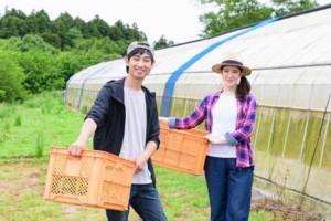 畑にいる農家の夫婦