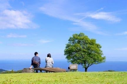 仲人が交際中のアドバイスで成婚に導く