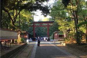 武蔵一宮氷川神社鳥居