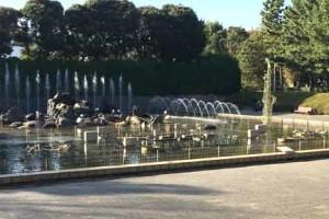 北浦和公園の音楽噴水