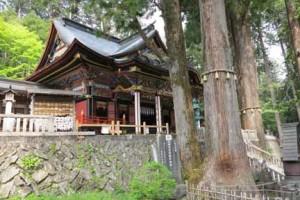 三峯神社本殿とご神木