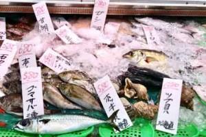 魚屋のショーケース
