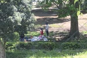 北浦和公園でピクニックする家族